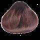 Chestnut - 5.4